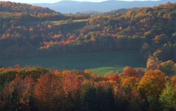 breathtaking fall foliage vermont