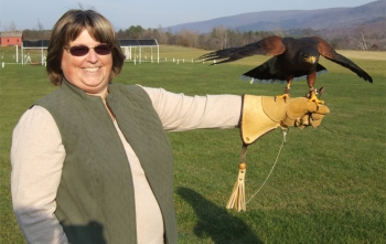 Falconry Lesson in Manchester VT