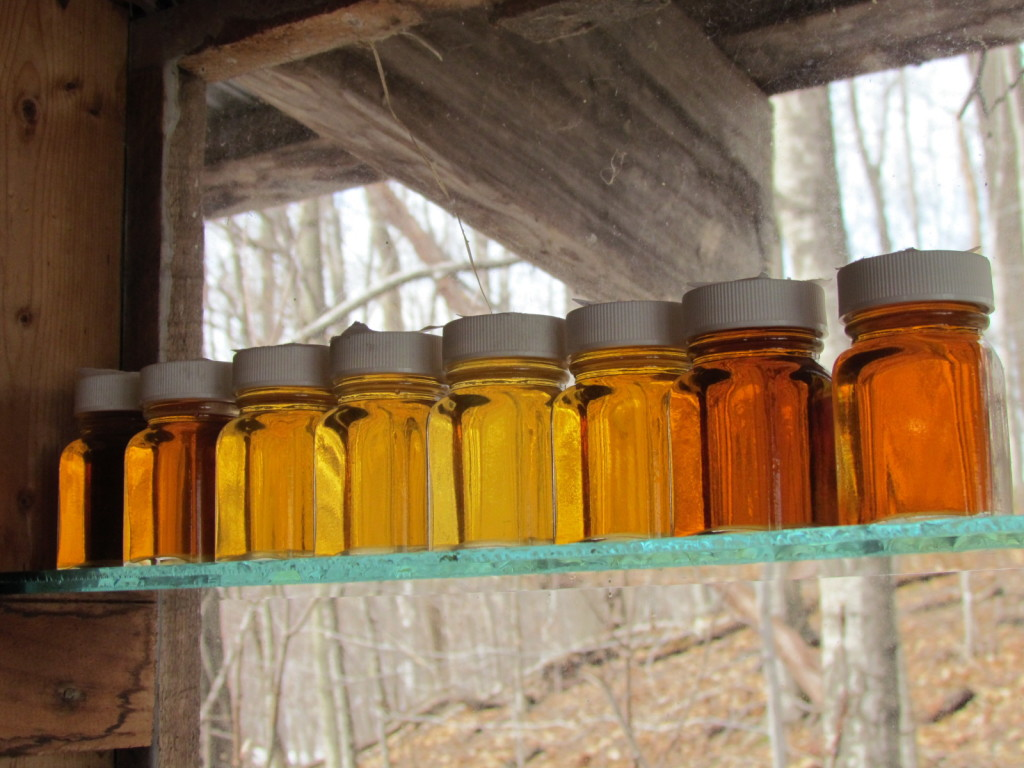 Maple Syrup is Vermont's Liquid Gold