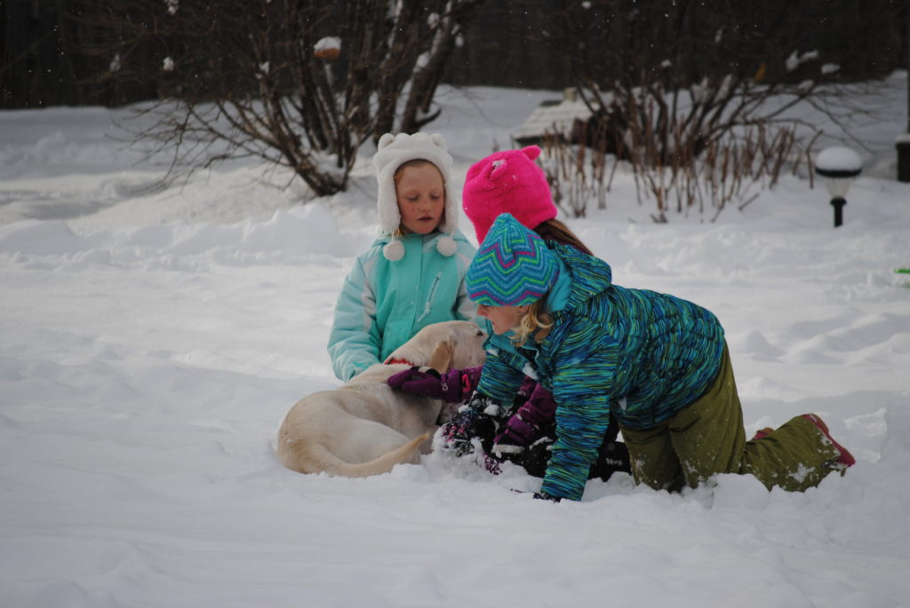 Kids and dogs enjoy the grounds at the Casablanca Motel